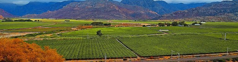 Breede Valley Accommodation banner