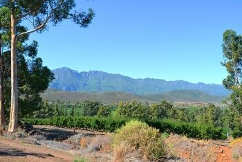 Langeberg Mountains, Wolfkloof just outside Robertson, Breede River Valley, Cape Winelands